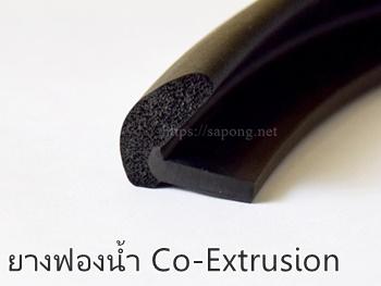 ยางฟองน้ำ Co-Extrusion